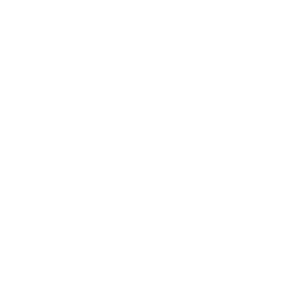 Kop Animal Skull Art by Jacqueline Chantler - Illustration, Web and Catalogue Design by Riette Error